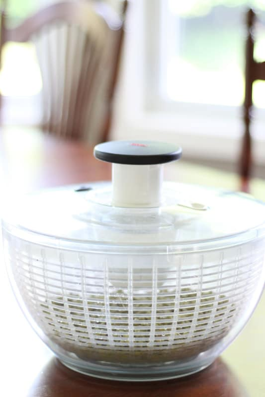 OXO Salad Spinner - How to Sprout