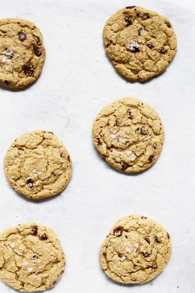 Gluten Free oat flour chocolate chip cookies healthy copy